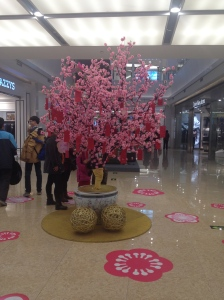 Tree in the InCity Shopping Centre